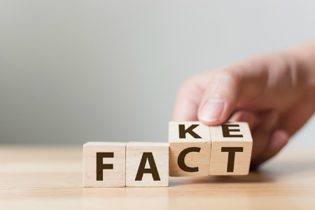 Wooden cubes showing switch between the words FACT and FAKE. Credit marchmeena29